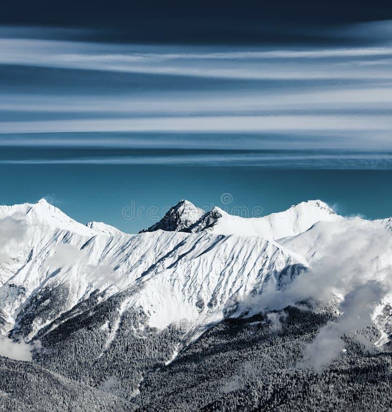 Взгляд зимы гор Кавказ около Krasnaya Polyana, Сочи, России стоковое фото rf
