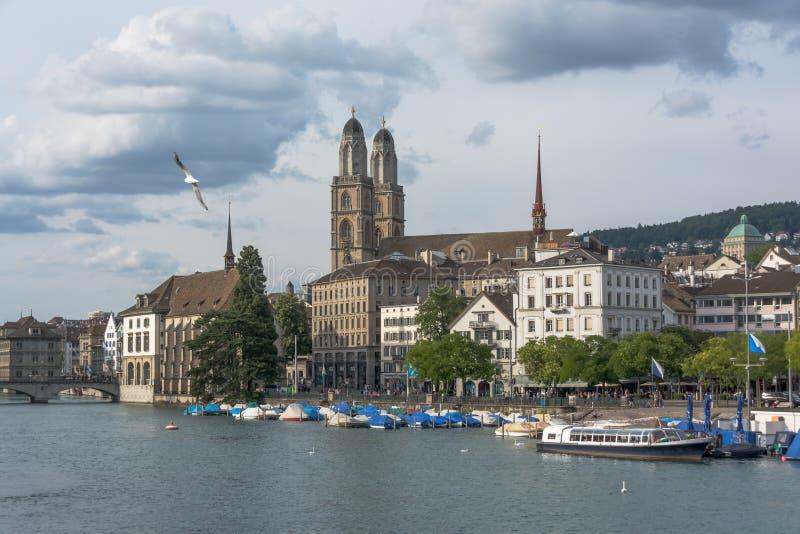 Взгляд исторического центра города Цюриха с рекой церков и Limmat Grossmunster Чайка в небе стоковое фото rf