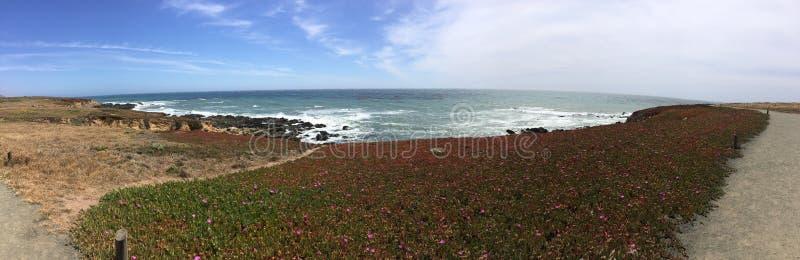 Взгляд и след заповедника ранчо Fiscalini прибрежный панорамные стоковое фото
