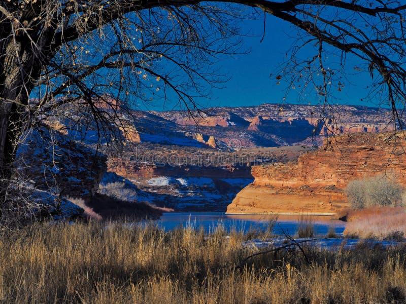 Взгляд каньона Horsethief голубых небес стоковые изображения rf