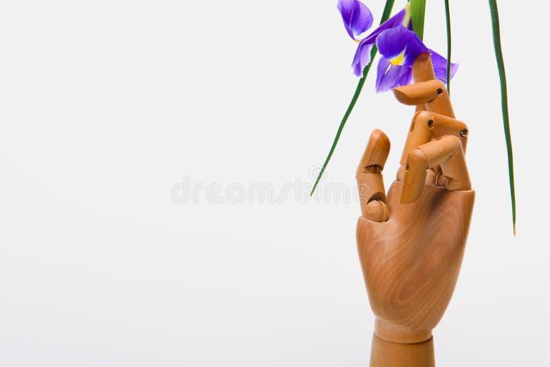 Взгляд конца-вверх руки на кукле с красивым цветком радужки стоковые фото