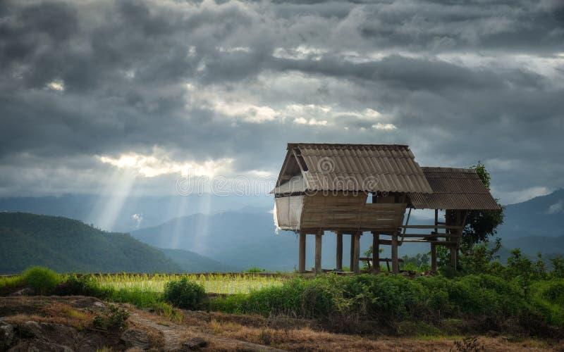 Взгляд коттеджа в лесе Piang кальяна с лучем солнца в пасмурном стоковая фотография