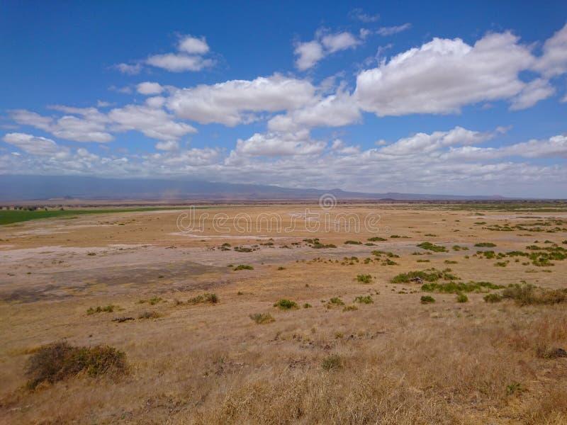 Взгляд красивого национального парка Amboseli стоковая фотография