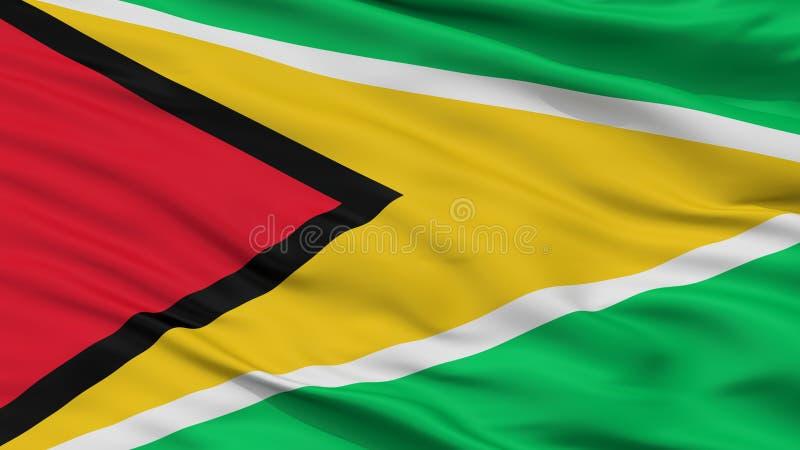 Взгляд крупного плана флага Ensign Гайаны военноморской иллюстрация вектора