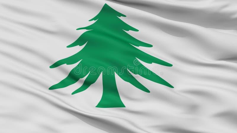 Взгляд крупного плана флага Ensign Массачусетса военноморской бесплатная иллюстрация