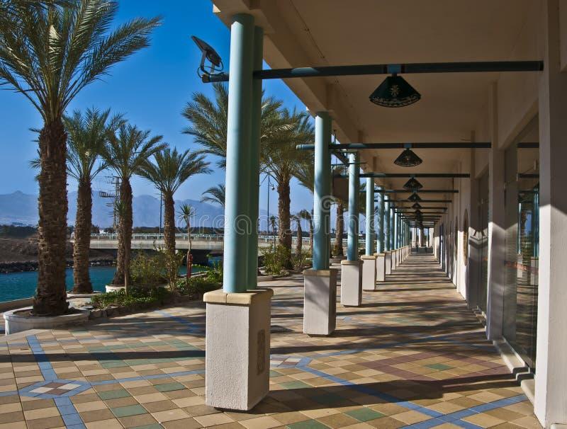 взгляд курорта Израиля гостиниц eilat города стоковое фото rf