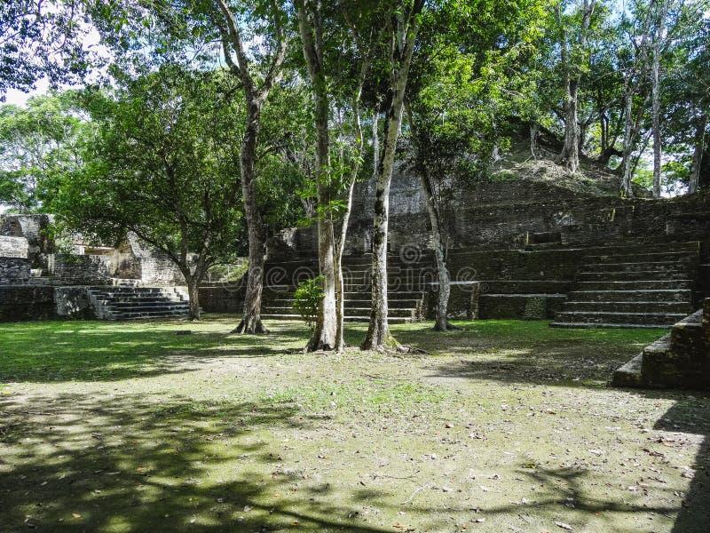 Взгляд к руинам запаса Xunantunich археологическим в Белизе стоковые фото
