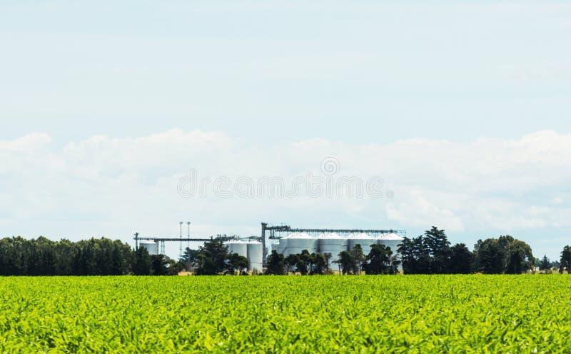 Взгляд ландшафта аграрных силосохранилищ в Новой Зеландии стоковое фото