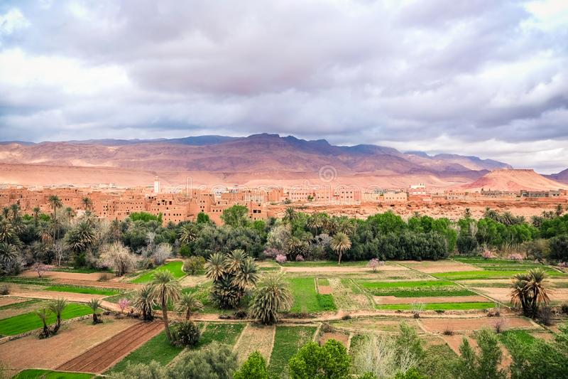 Взгляд ландшафта города в оазисе, Марокко Tinghir стоковое фото rf
