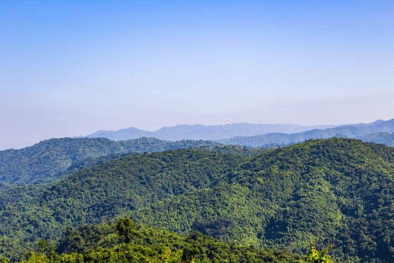 Взгляд ландшафта зеленых деревьев на горе дождевого леса в Thailan стоковая фотография rf