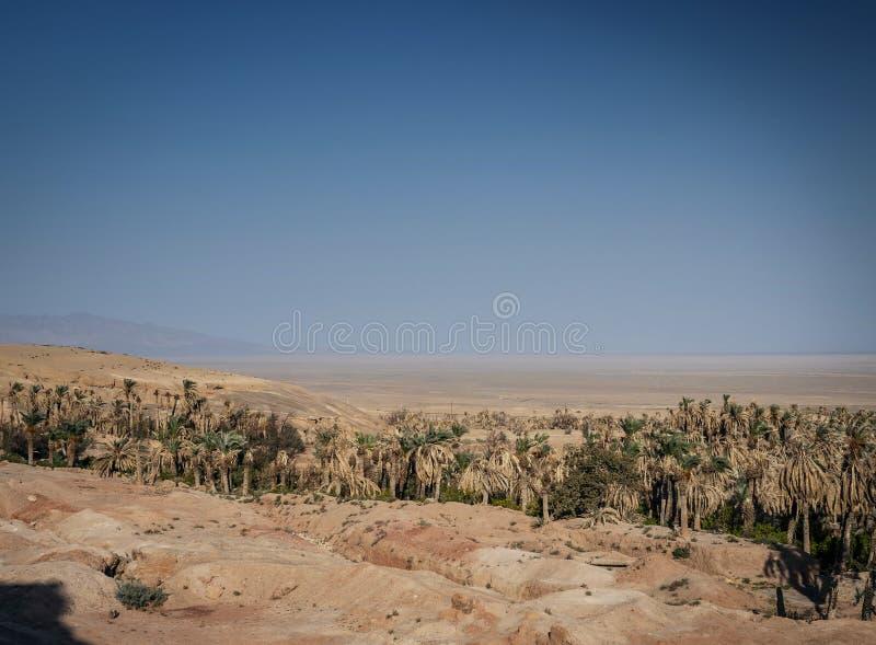 Взгляд ландшафта пустыни в оазисе южном Иране garmeh стоковые фотографии rf