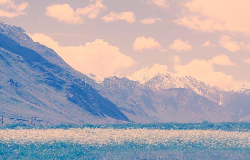 Взгляд ландшафта Zanskar с горами Гималаев покрытыми со снегом и голубым небом в Джамму & Кашмире, Индии стоковые изображения rf