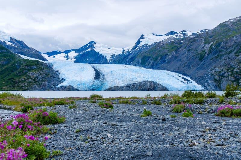 Взгляд ледника Portage в Аляске, США стоковые изображения rf