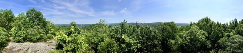 Взгляд лета сценарный от следа Mattatuck стоковая фотография rf