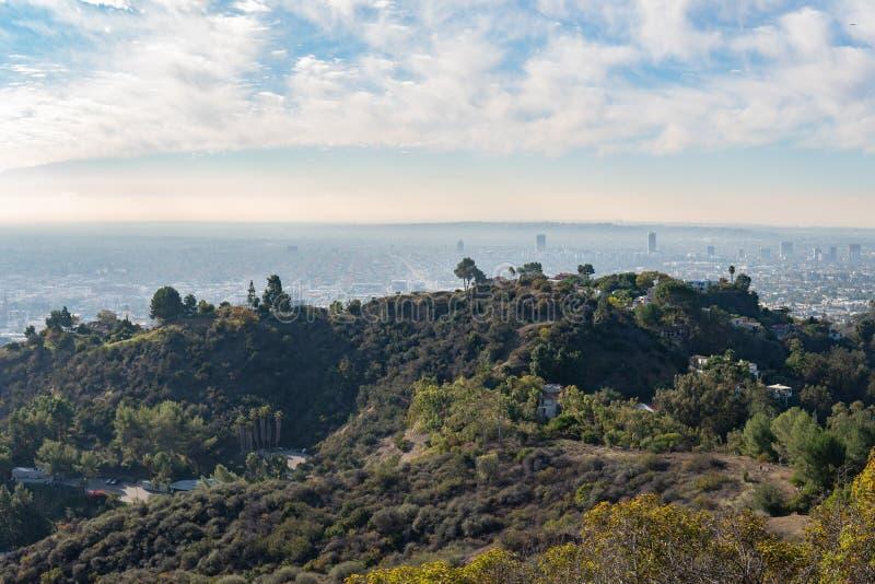 Взгляд Лос-Анджелеса от Hollywood Hills Ла центра города Шар Голливуда кот день наблюдает сидит солнечный вал теплый Красивые обл стоковые фото