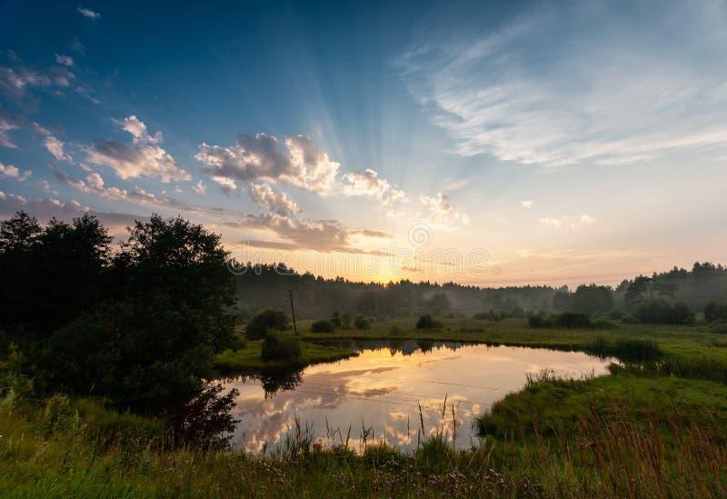 Взгляд лучей захода солнца под озером леса стоковое фото