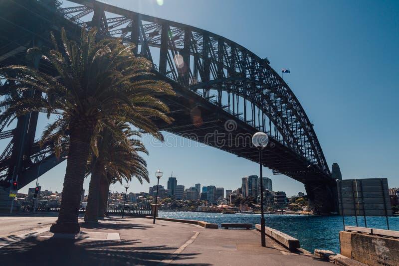 Взгляд моста гавани с пальмами стоковые изображения rf