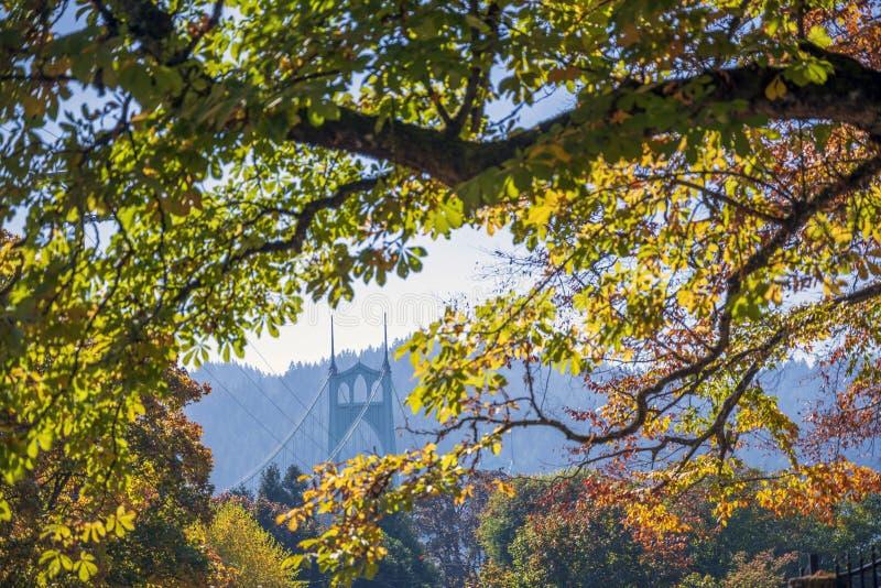 Взгляд моста St. Johns через листву деревьев осени стоковое изображение rf