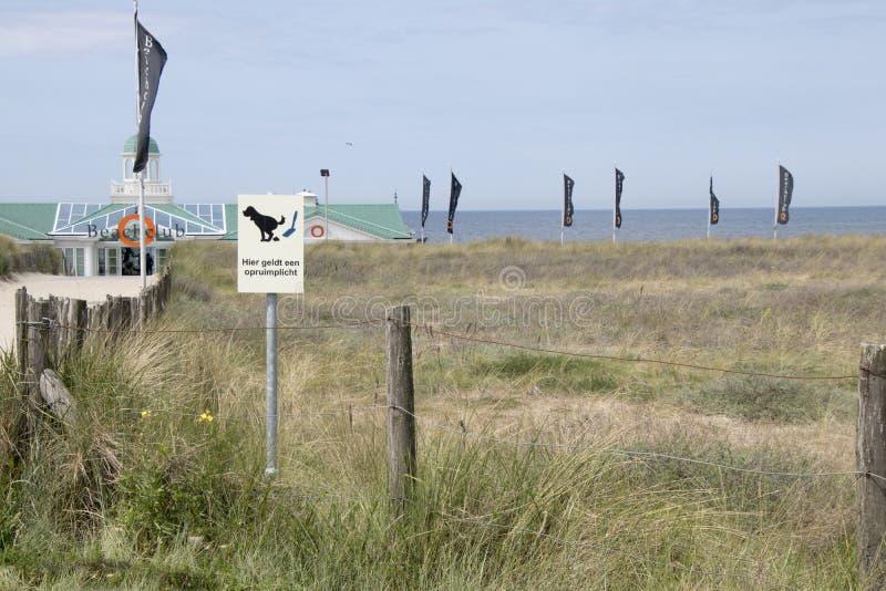 Взгляд над дюнами Северное море стоковые изображения rf