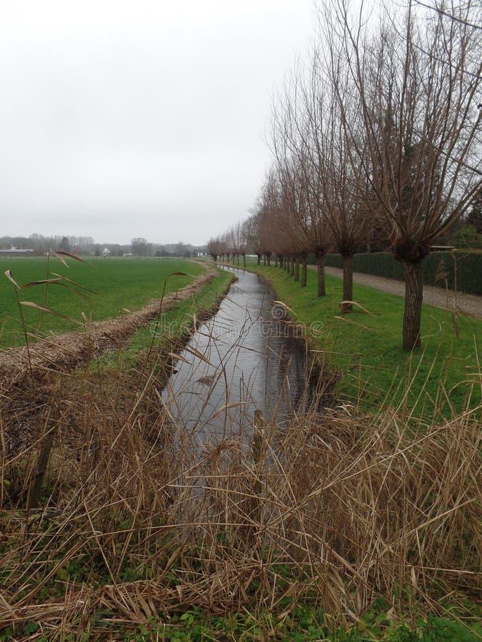 Взгляд над каналом в Maarssen, Нидерландами стоковое изображение
