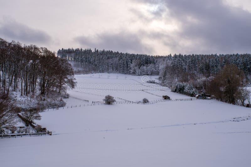 Взгляд над снежными полями и лесами, выравнивая небо с солнцем, Brilon стоковое фото rf