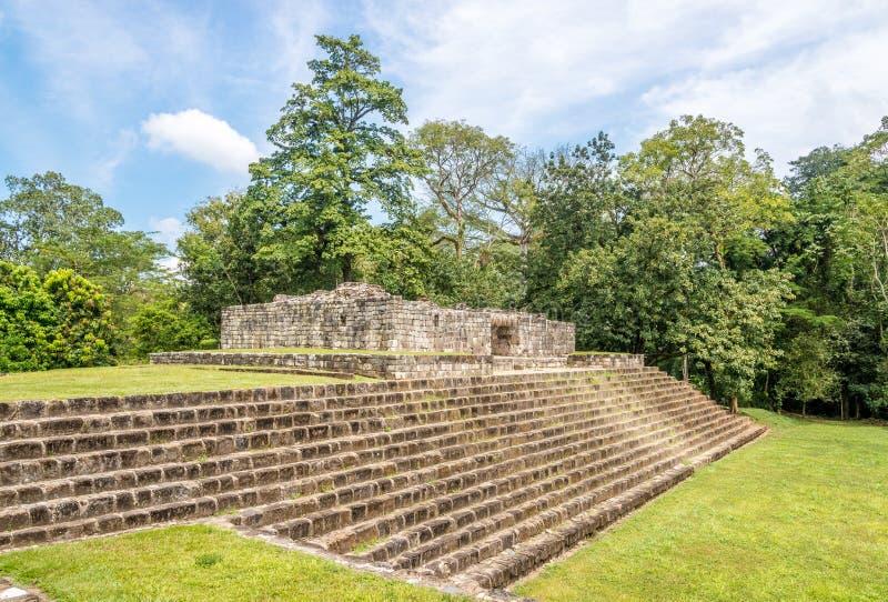 Взгляд на акрополе в старых археологических раскопках Майя в Quirigua - Гватемале стоковое фото rf
