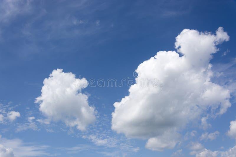Взгляд на красивых облаках кумулюса, выглядя как плавая части хлопка, в идеальном голубом небе стоковые фото