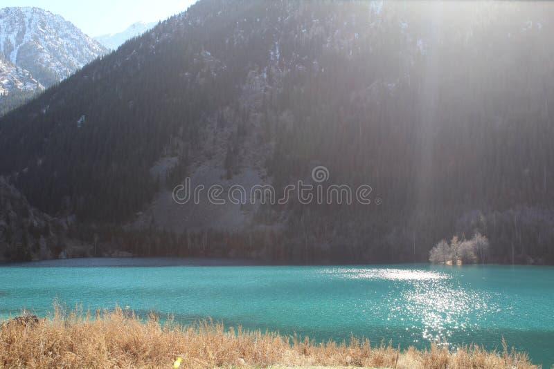 Взгляд на озере горы и стороне горы с елевой древесиной ` s стоковые изображения