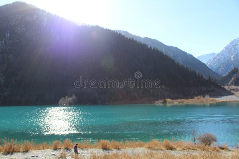 Взгляд на озере горы и стороне горы с елевой древесиной ` s стоковое фото