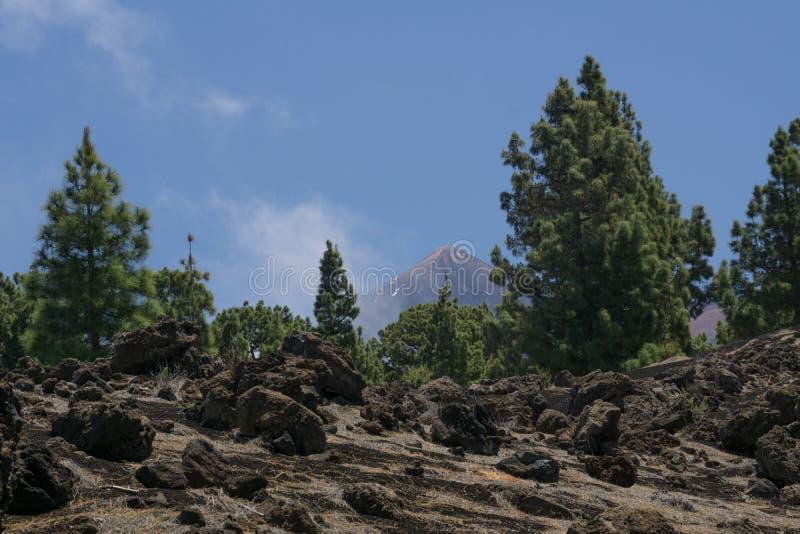 Взгляд на пике Pico del Teide стоковое фото