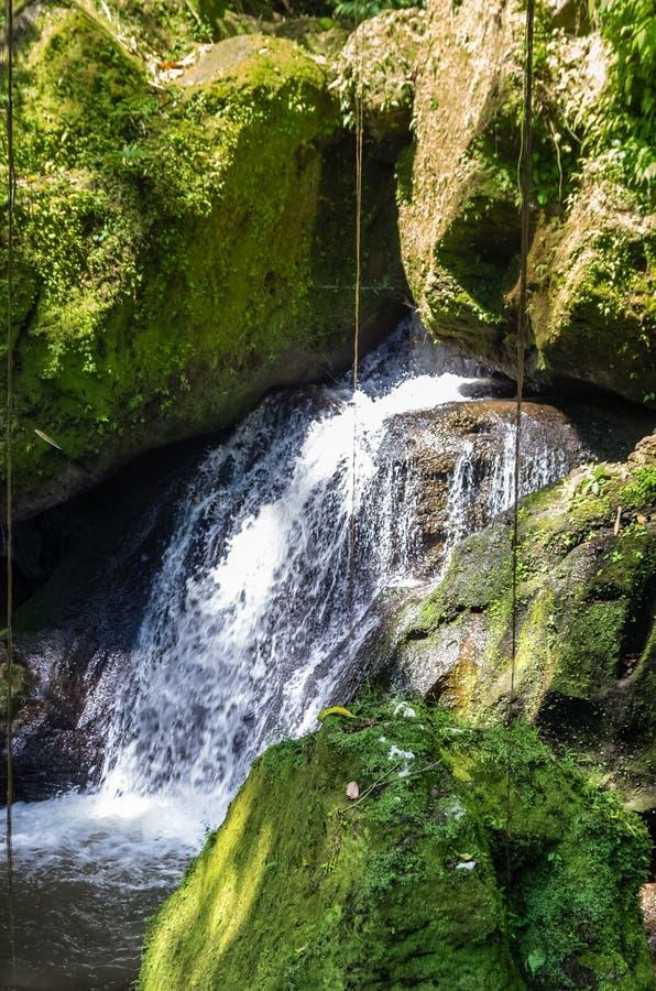 Взгляд на реке и водопаде горы на зоне Goa Gajah индусского виска стоковое фото rf