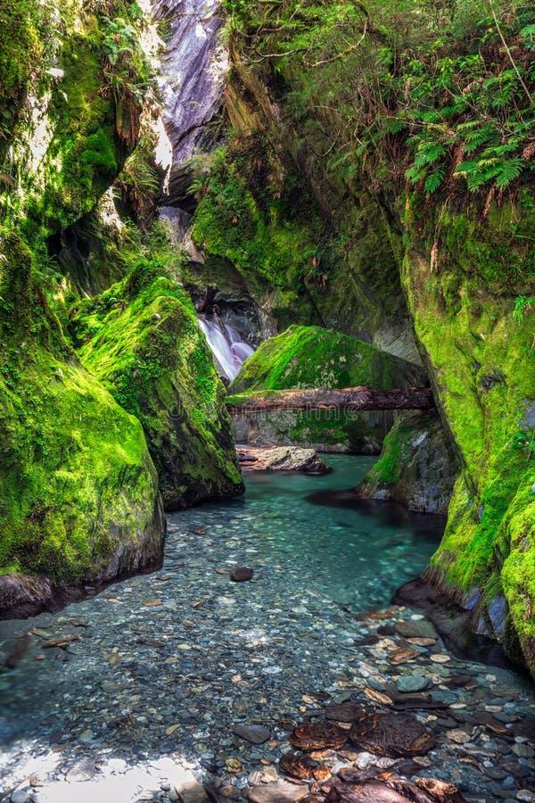Взгляд Новой Зеландии стоковые изображения rf