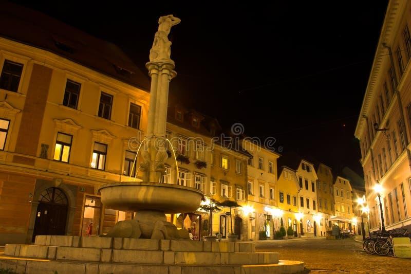 взгляд ночи ljubljana стоковые фото