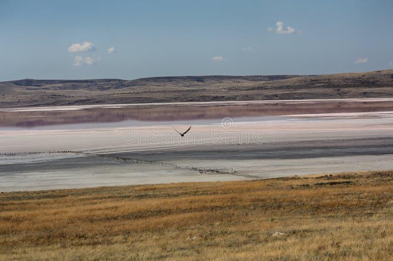 Взгляд озера соли Chokrak стоковые фото