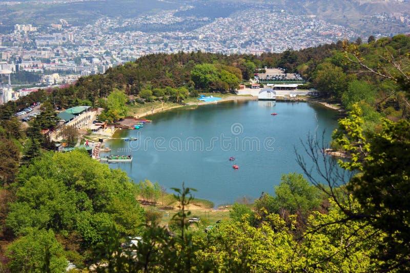 Взгляд озера черепаха в Тбилиси, Грузии стоковая фотография rf