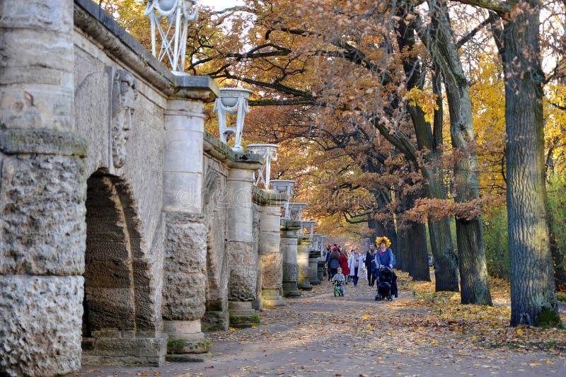 Взгляд осени в парке Катрин в Tsarskoye Selo стоковое изображение