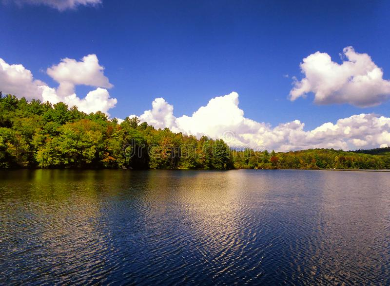 Взгляд осени парка штата пруда заусенца стоковые изображения rf