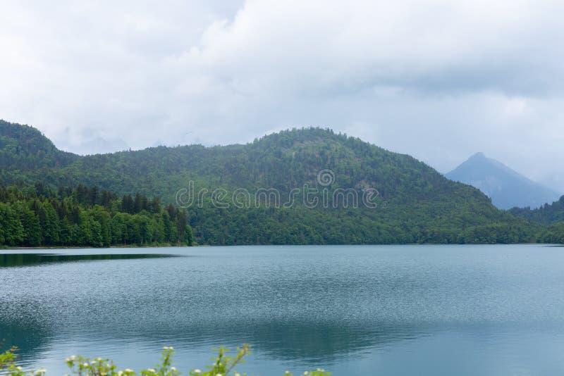 Взгляд открытки озера Alpsee окруженный горами Альп, Баварией, Германией Лето весны Голубая чистая вода Никто стоковое изображение rf