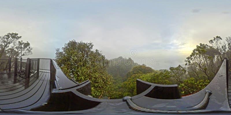 взгляд 360 от верхней части горы в следе джунглей стоковое изображение rf