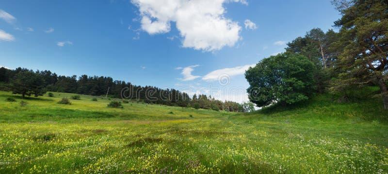 Взгляд от горы Rhodope стоковые изображения rf