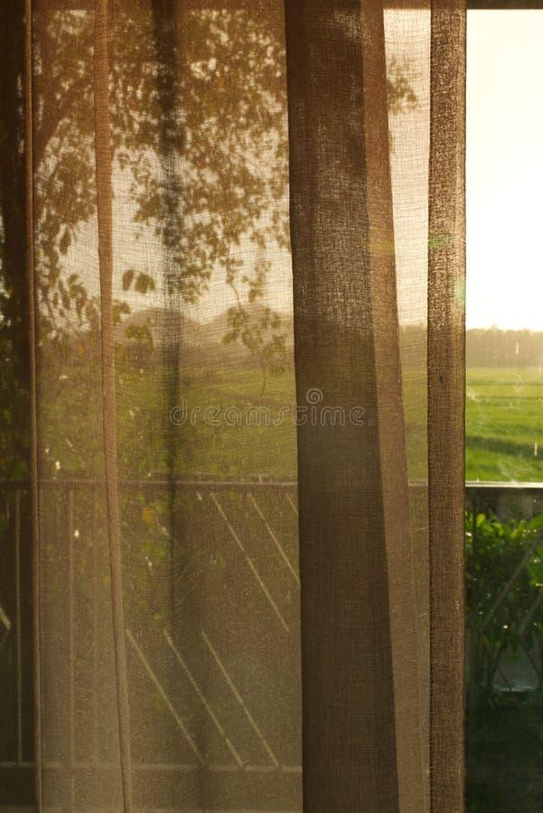 Взгляд от комнаты смотря к полю риса стоковое изображение rf