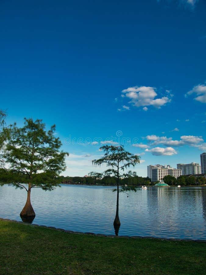 Взгляд от края озера стоковое изображение rf
