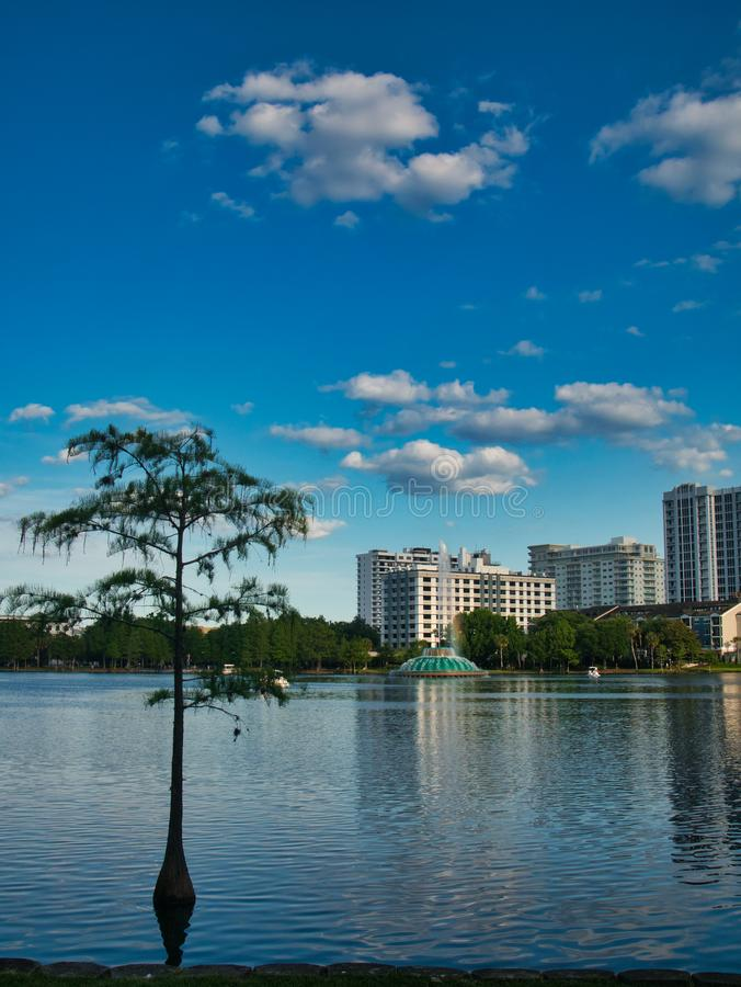 Взгляд от края озера стоковые изображения