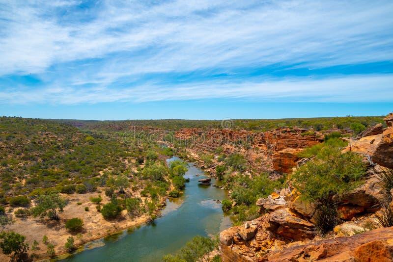 Взгляд от ястребов возглавляет бдительность в национальном парке западной Австралии Kalbarri стоковые изображения