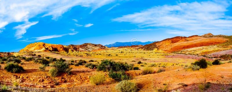 Взгляд панорамы горных пород песчаника вдоль белого следа купола в долине огня сильной стоковое фото