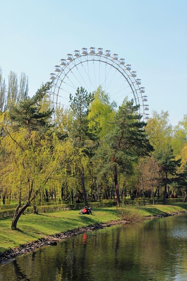 Взгляд парка с нежно деревьями зеленого цвета и прудом на ясный весенний день и колеса Ferris против голубого неба стоковое фото rf