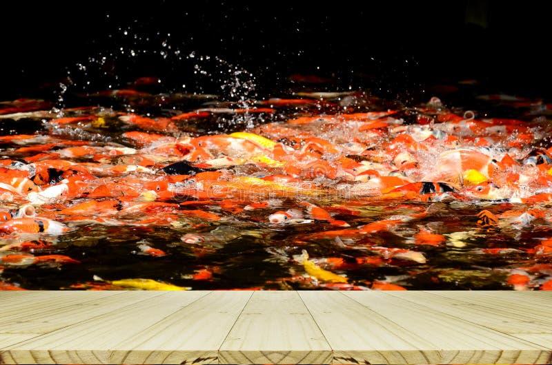 Взгляд перспективы деревянный с предпосылкой рыбного пруда Koi задворк стоковые изображения rf