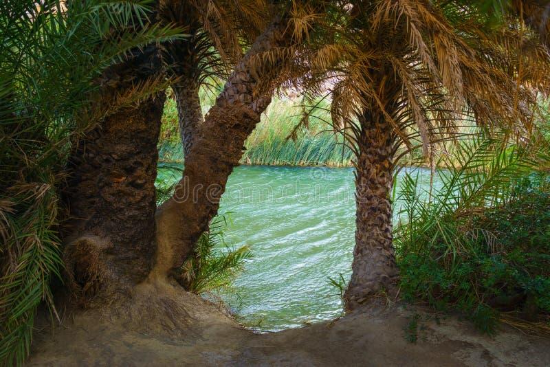 Взгляд пляжа Preveli реки стоковая фотография