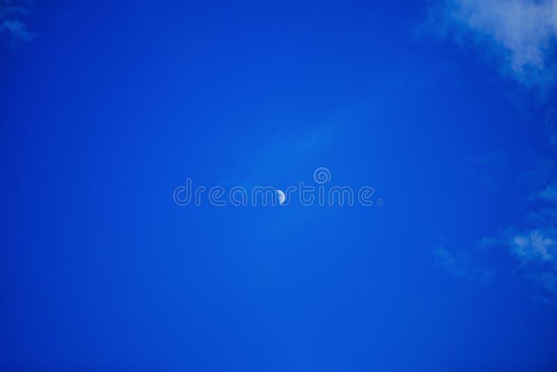 Взгляд поднимая луны вечером летом Растя месяц стоковая фотография rf