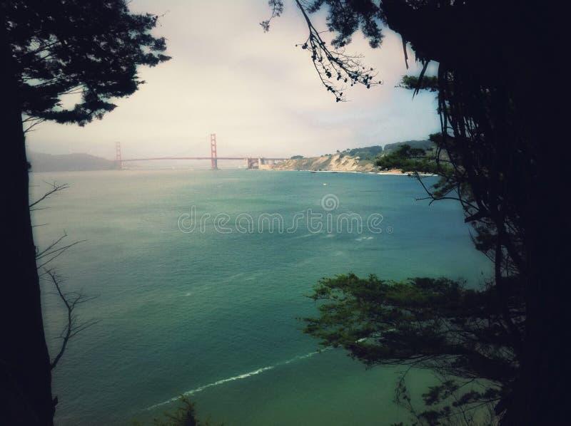 Взгляд пока пеший туризм в Сан-Франциско стоковое фото rf